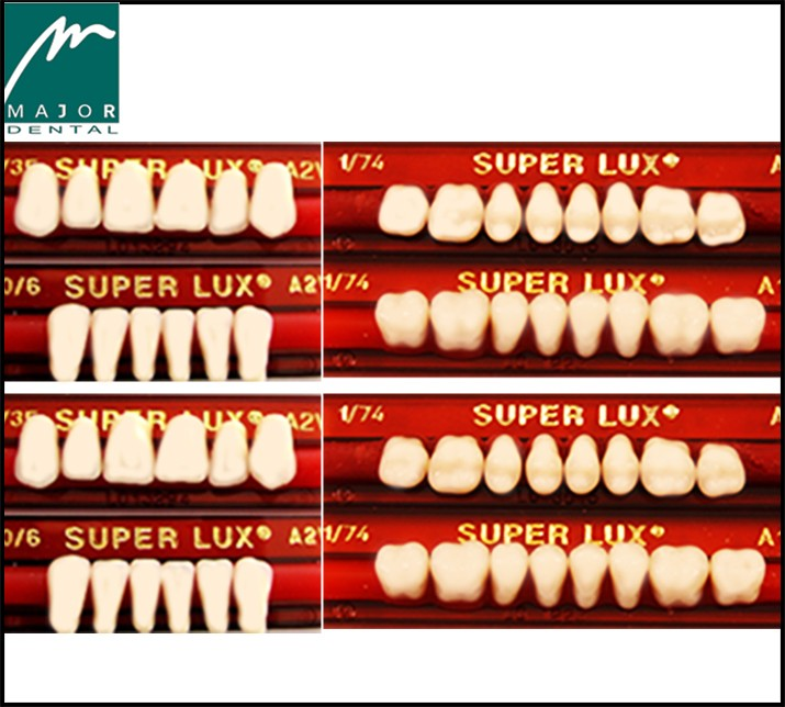 SET OF ANTERIOR 6 & SET OF POSTERIOR 8 --  MAJOR SUPER LUX TEETH SETS